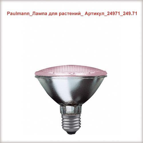 Paulmann_24971_249.71_