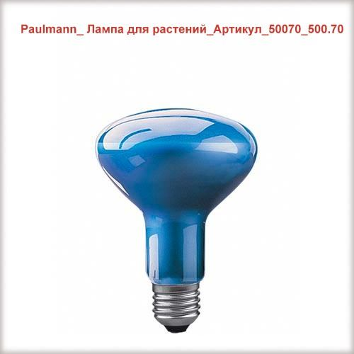 Paulmann_50070_500.70_